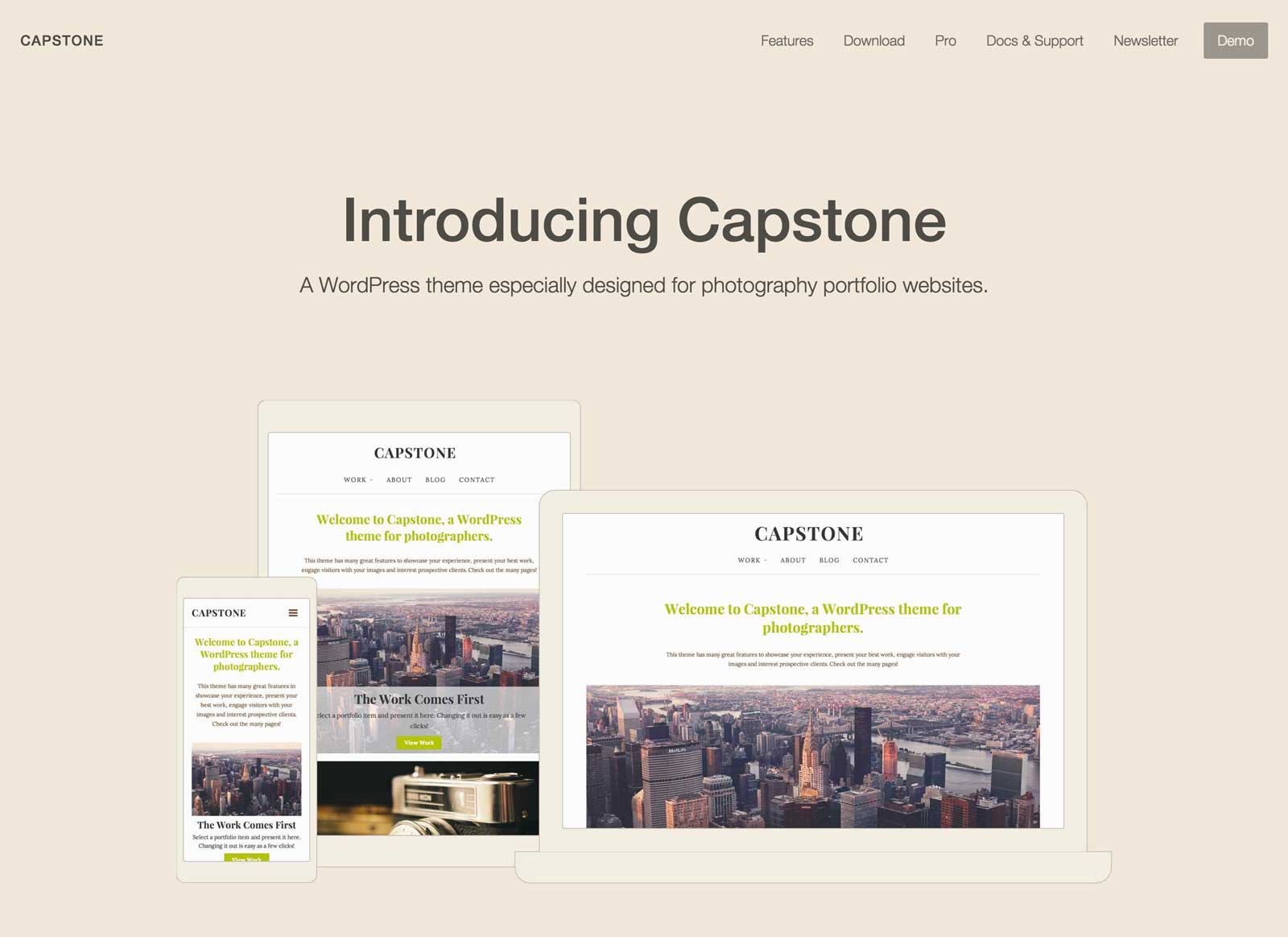 A screenshot of Capstone's demo site